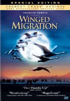 cover: Winged Migration